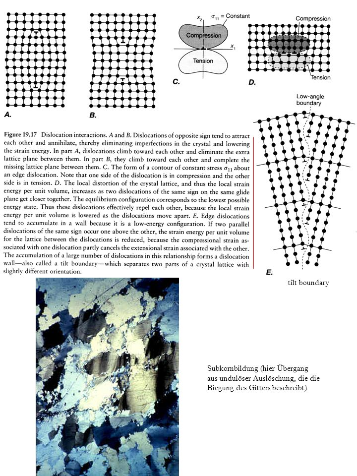 tilt boundary Subkornbildung (hier Übergang aus undulöser Auslöschung, die die Biegung des Gitters beschreibt)