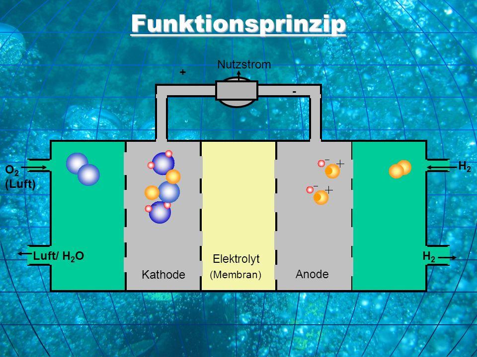 Funktionsprinzip Nutzstrom + - H2 O2 (Luft) Luft/ H2O H2 Kathode
