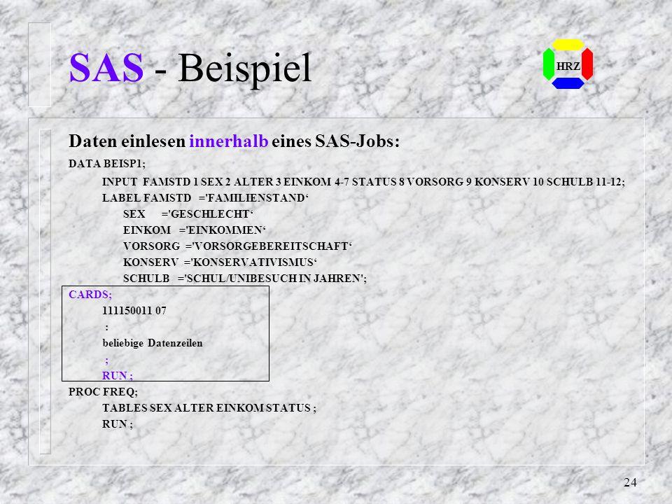 SAS - Beispiel Daten einlesen innerhalb eines SAS-Jobs: HRZ