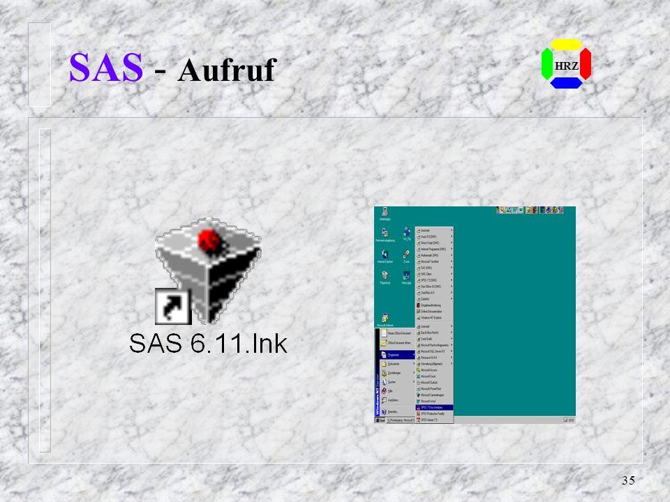 SAS - Aufruf HRZ