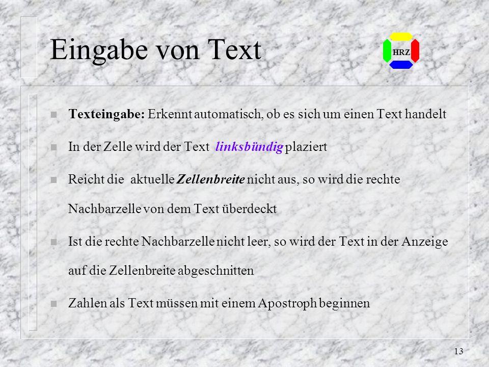 Eingabe von Text HRZ. Texteingabe: Erkennt automatisch, ob es sich um einen Text handelt. In der Zelle wird der Text linksbündig plaziert.