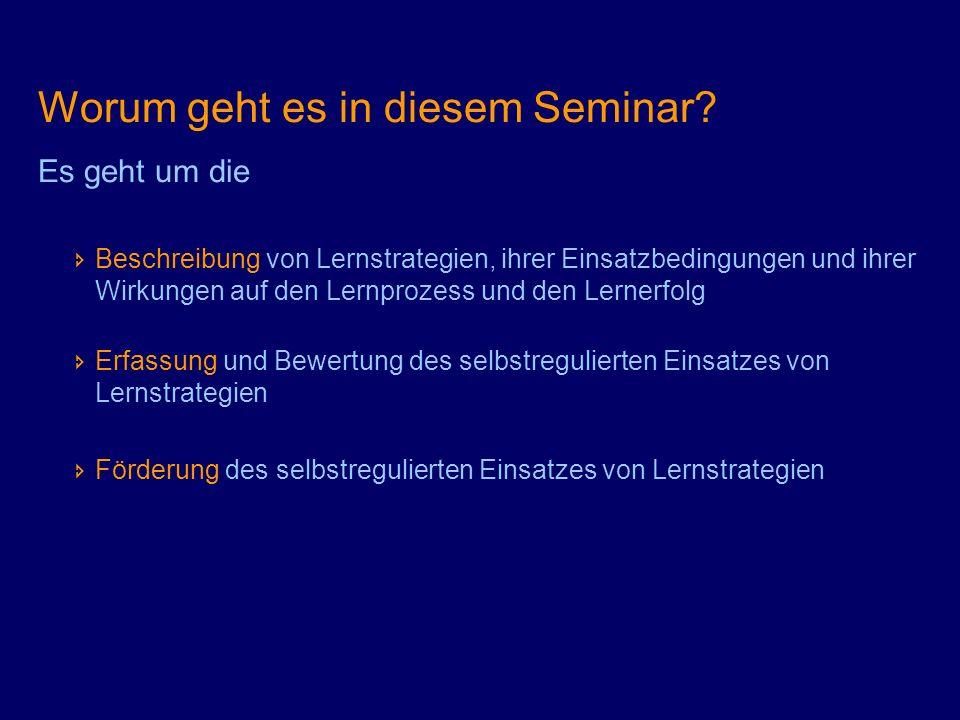 Worum geht es in diesem Seminar