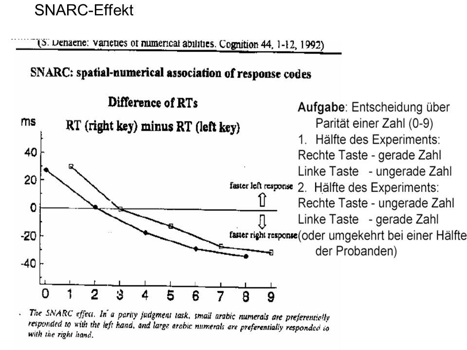 SNARC-Effekt
