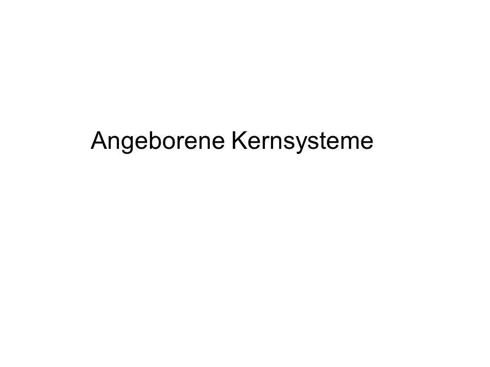 Angeborene Kernsysteme
