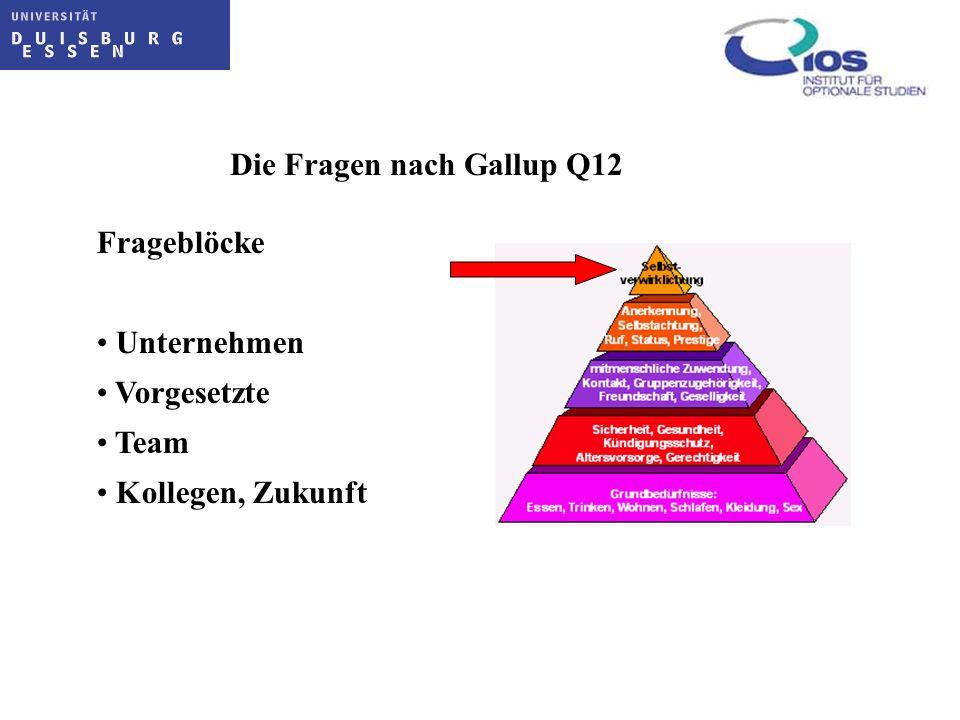 Die Fragen nach Gallup Q12