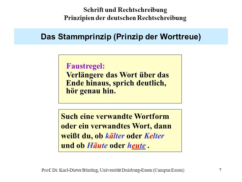 Das Stammprinzip (Prinzip der Worttreue)