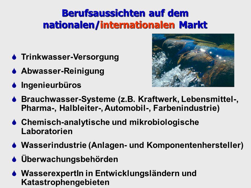 Berufsaussichten auf dem nationalen/internationalen Markt