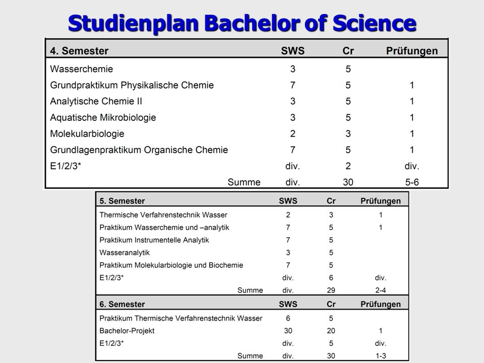 Studienplan Bachelor of Science