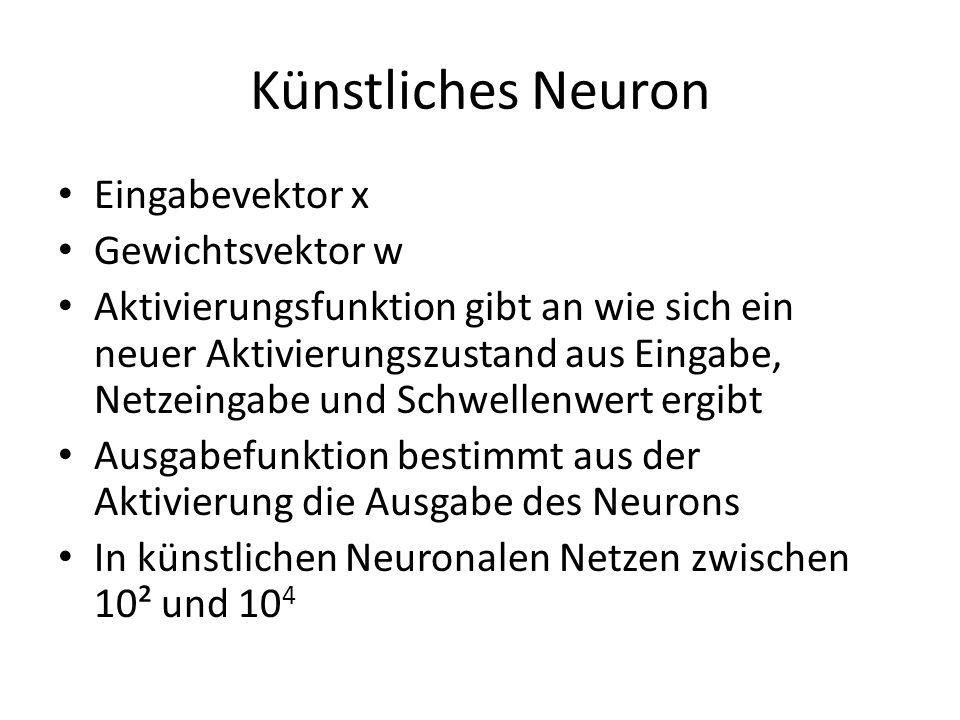 Künstliches Neuron Eingabevektor x Gewichtsvektor w
