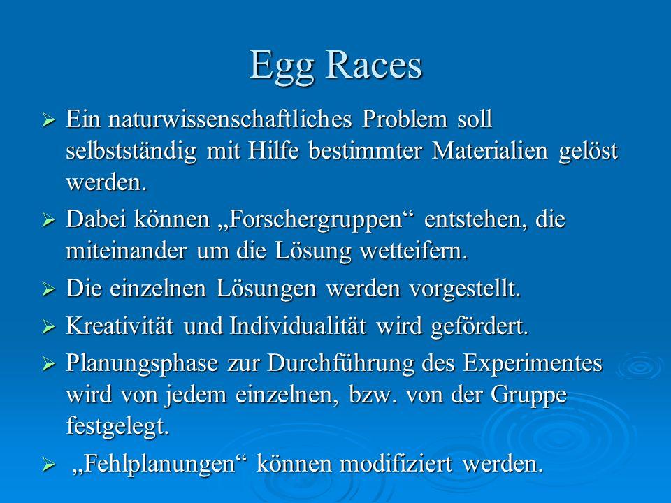 Egg Races Ein naturwissenschaftliches Problem soll selbstständig mit Hilfe bestimmter Materialien gelöst werden.