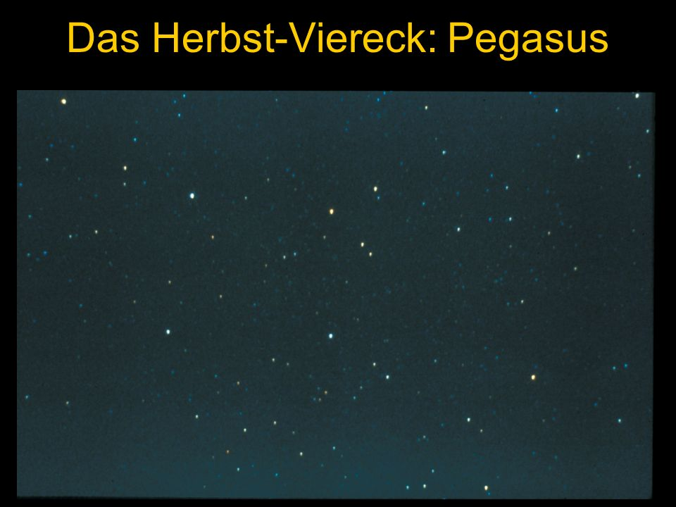 Das Herbst-Viereck: Pegasus