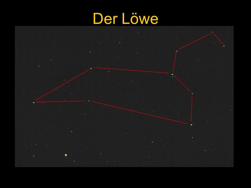 Der Löwe Mars im Löwen, Hasbergen, 11.04.1997 Mars