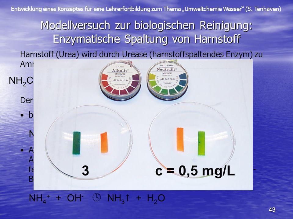 Modellversuch zur biologischen Reinigung: Enzymatische Spaltung von Harnstoff