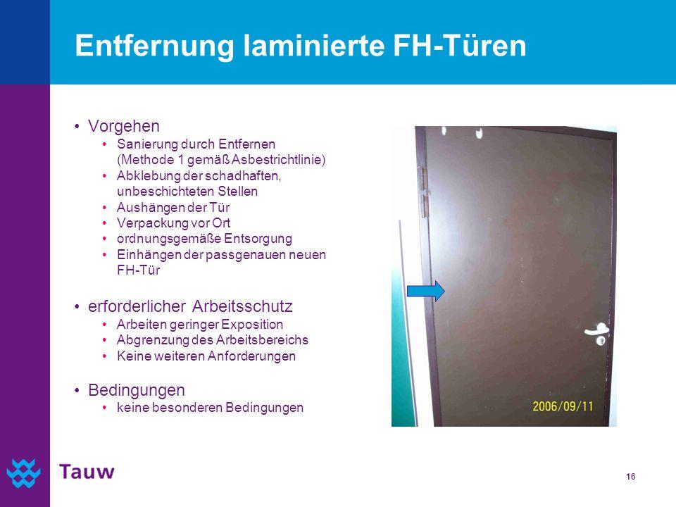 Entfernung laminierte FH-Türen
