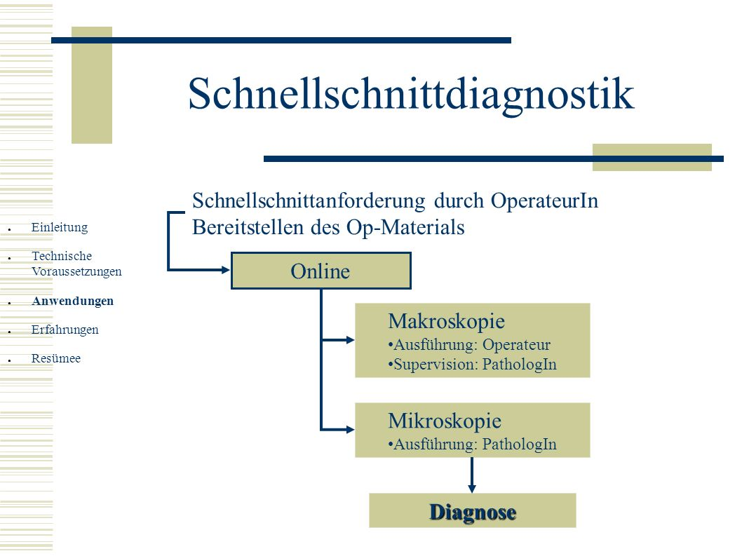 Schnellschnittdiagnostik