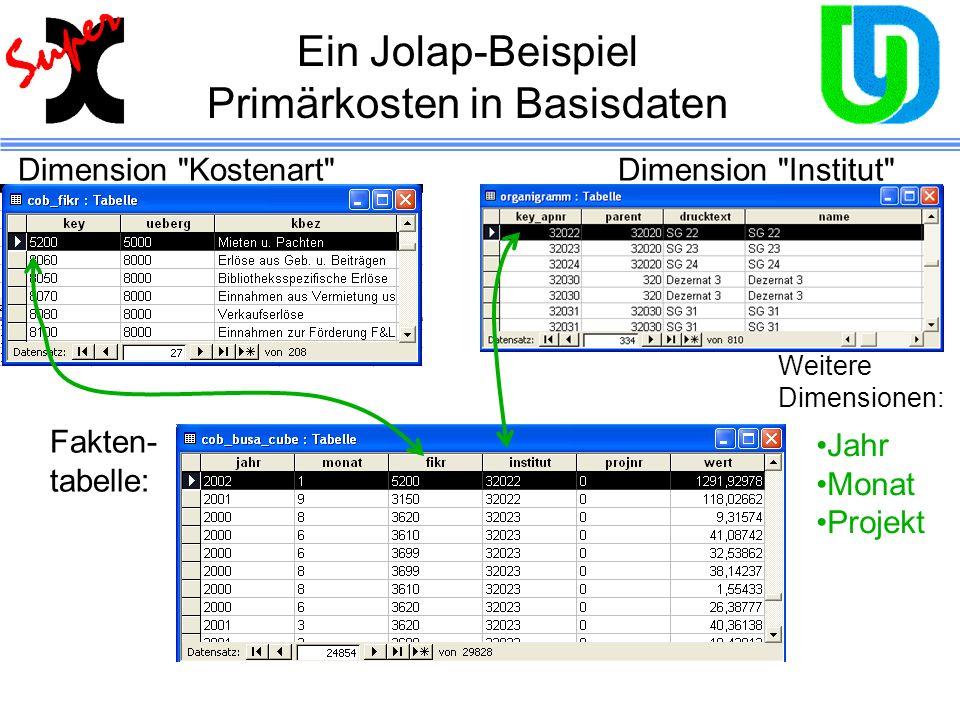 Ein Jolap-Beispiel Primärkosten in Basisdaten