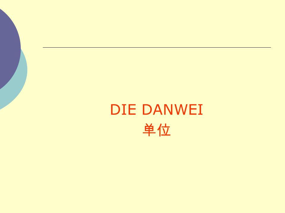 DIE DANWEI 单位