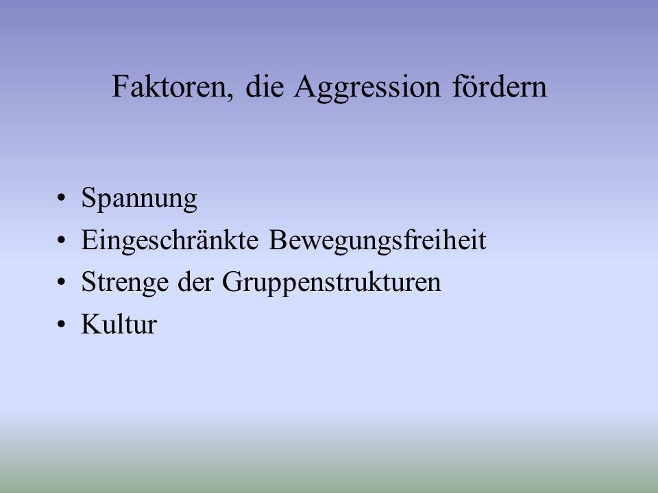 Faktoren, die Aggression fördern