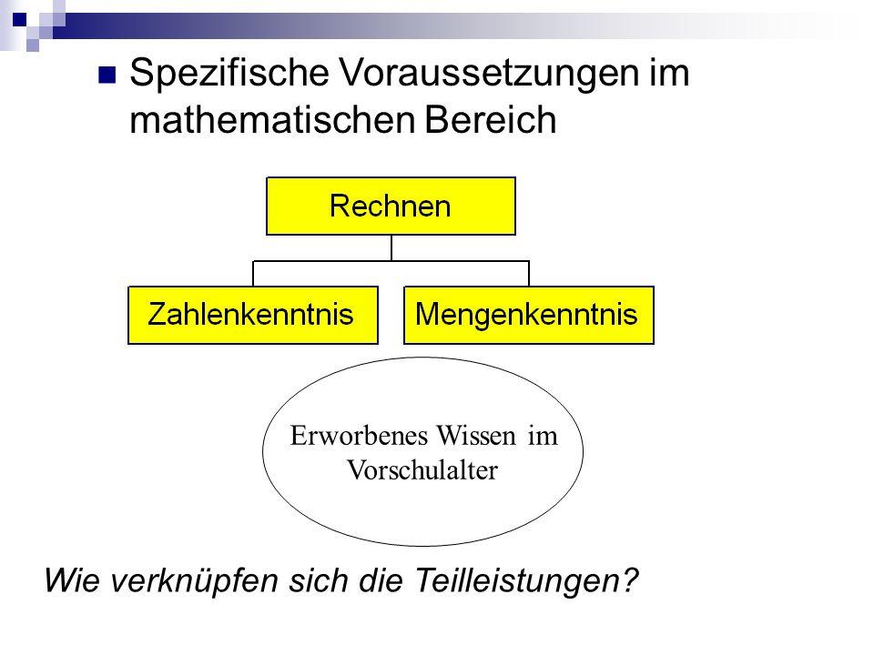Spezifische Voraussetzungen im mathematischen Bereich
