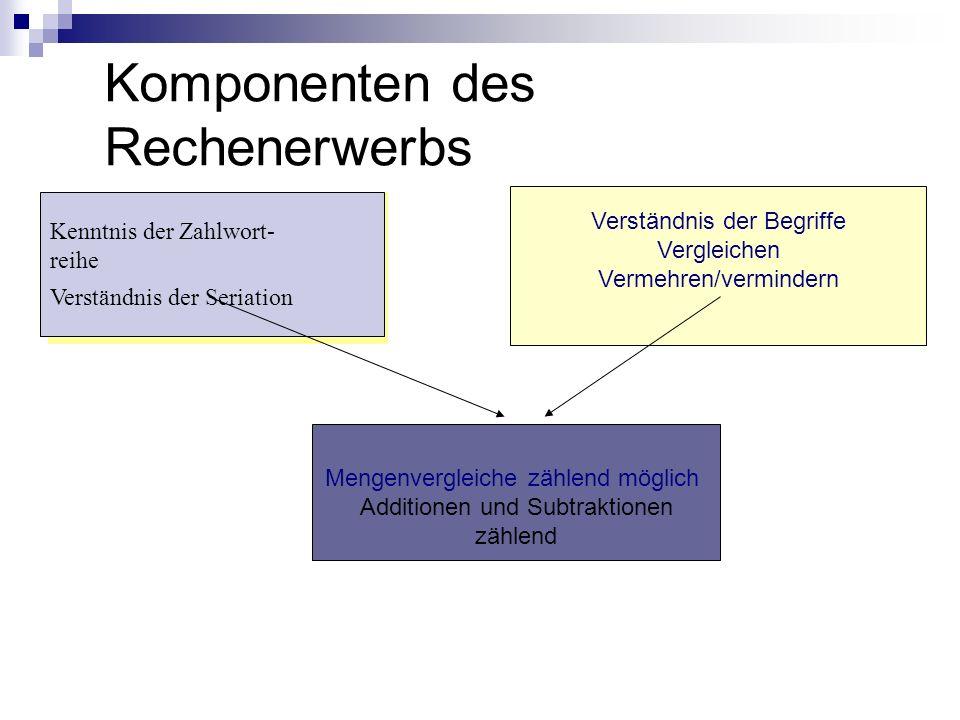 Komponenten des Rechenerwerbs