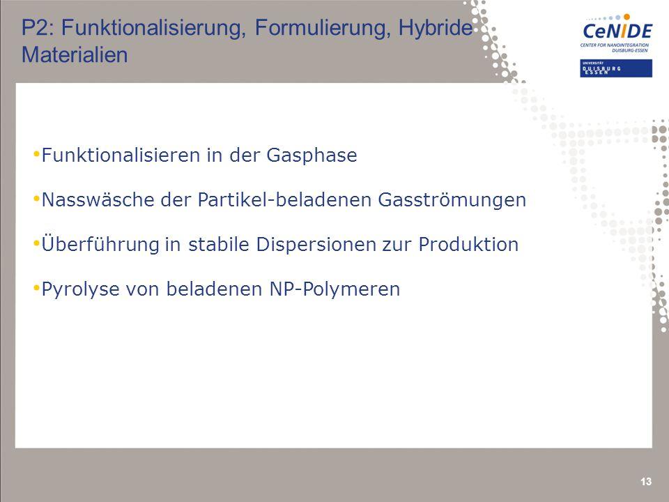 P2: Funktionalisierung, Formulierung, Hybride Materialien