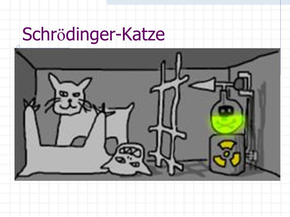 Schrödinger-Katze