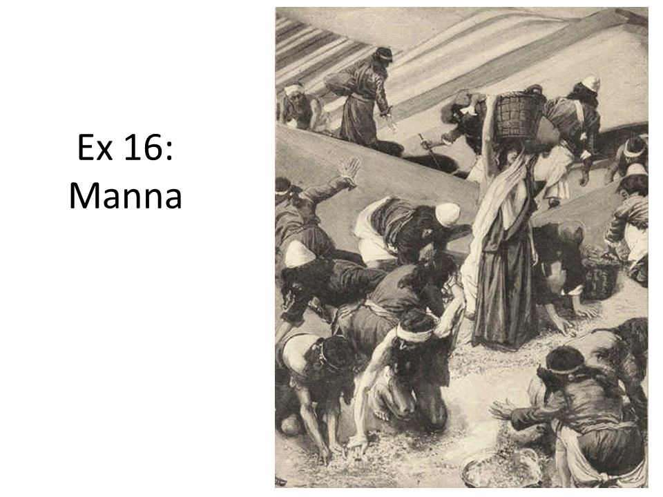 Ex 16: Manna