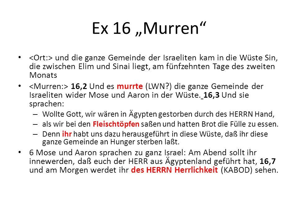 """Ex 16 """"Murren"""