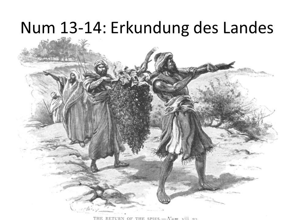 Num 13-14: Erkundung des Landes