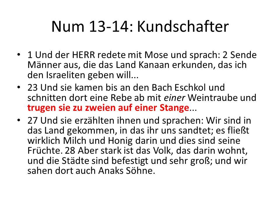 Num 13-14: Kundschafter