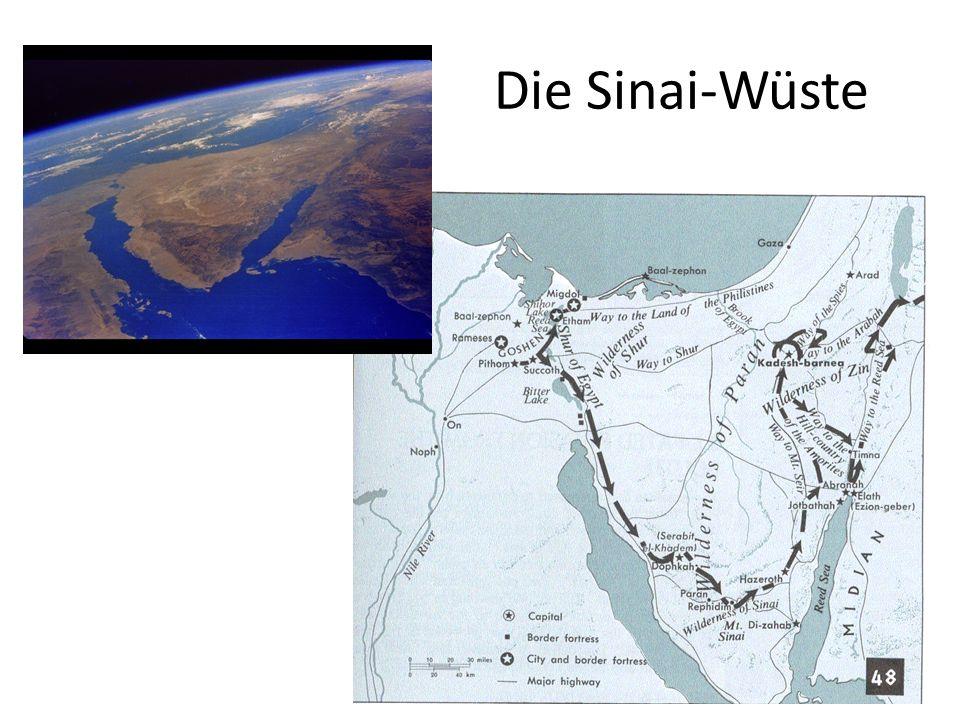 Die Sinai-Wüste