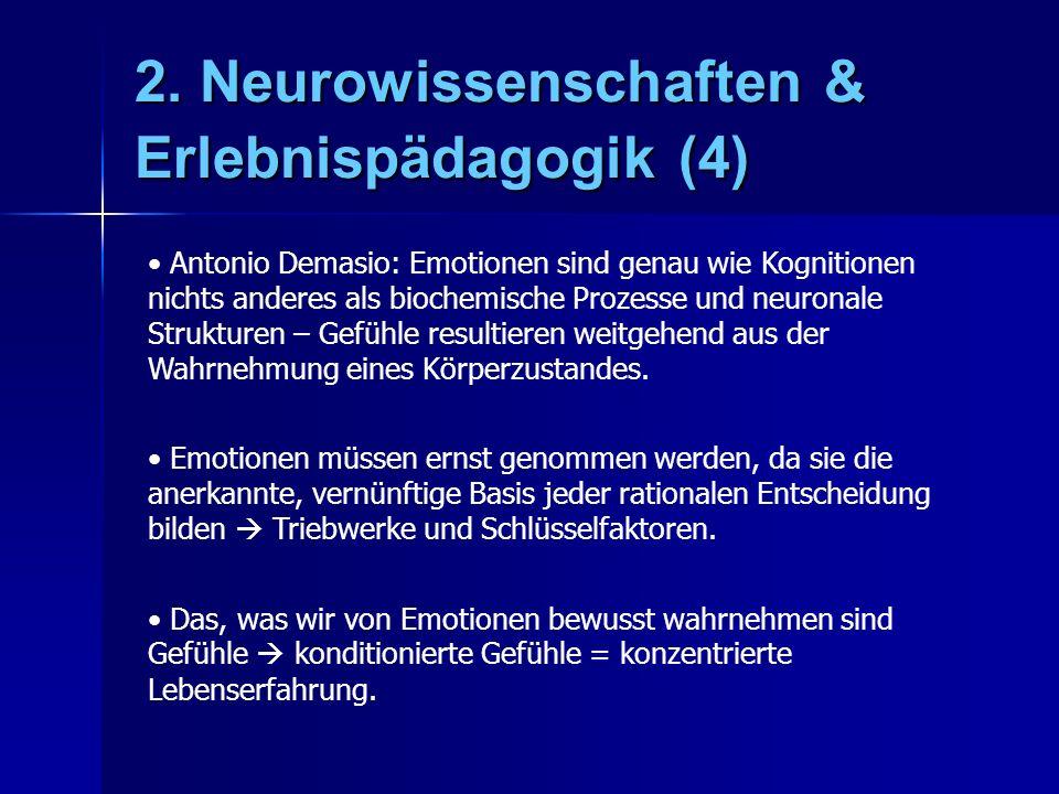 2. Neurowissenschaften & Erlebnispädagogik (4)
