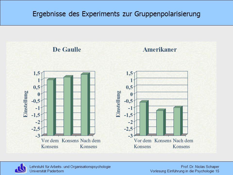 Ergebnisse des Experiments zur Gruppenpolarisierung