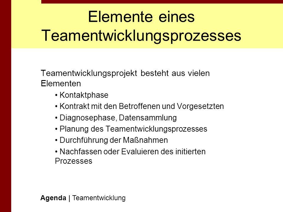 Elemente eines Teamentwicklungsprozesses