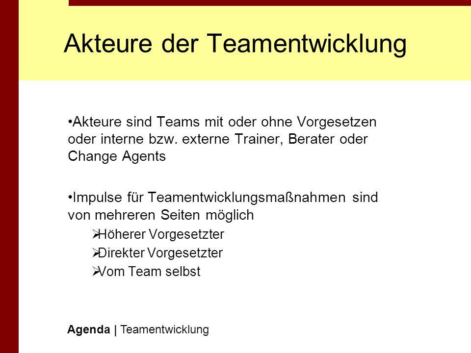 Akteure der Teamentwicklung