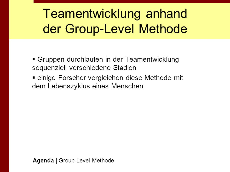 Teamentwicklung anhand der Group-Level Methode