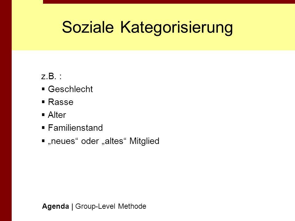Soziale Kategorisierung