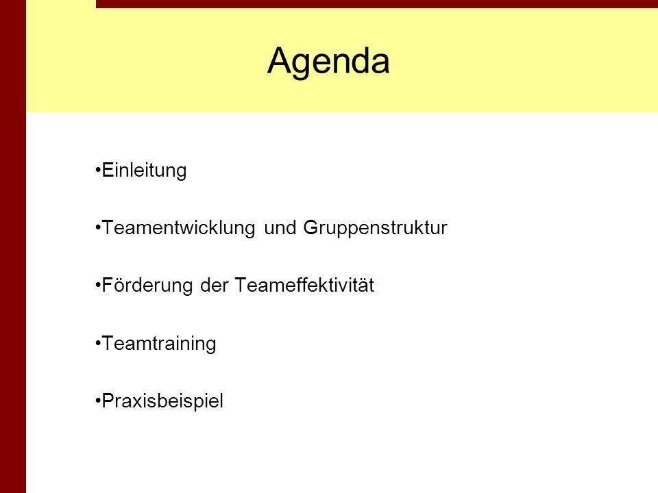 Agenda Einleitung Teamentwicklung und Gruppenstruktur