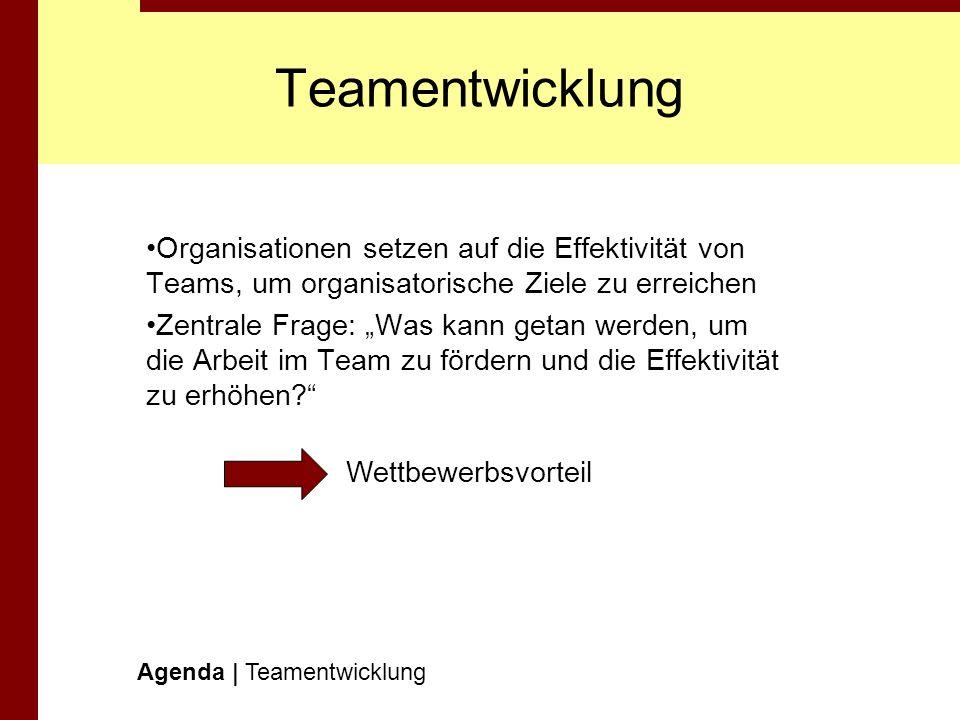 TeamentwicklungOrganisationen setzen auf die Effektivität von Teams, um organisatorische Ziele zu erreichen.