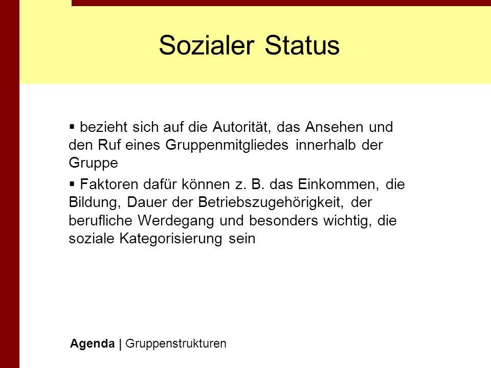 Sozialer Status bezieht sich auf die Autorität, das Ansehen und den Ruf eines Gruppenmitgliedes innerhalb der Gruppe.