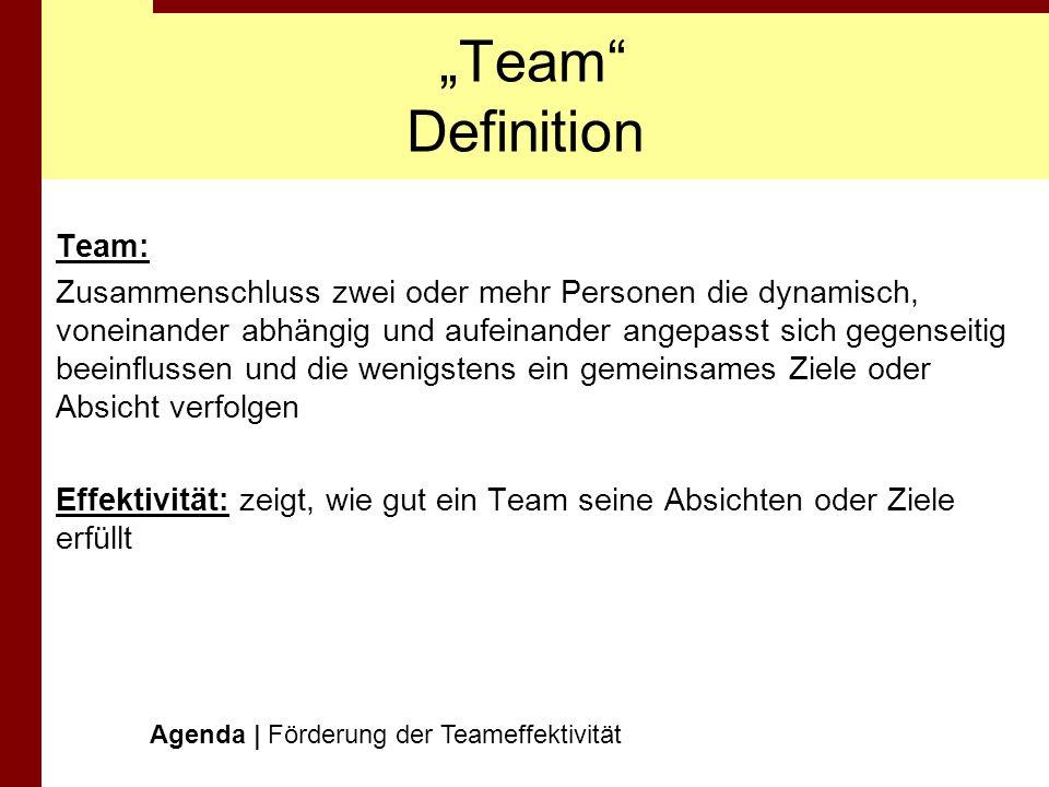 """""""Team Definition Team:"""