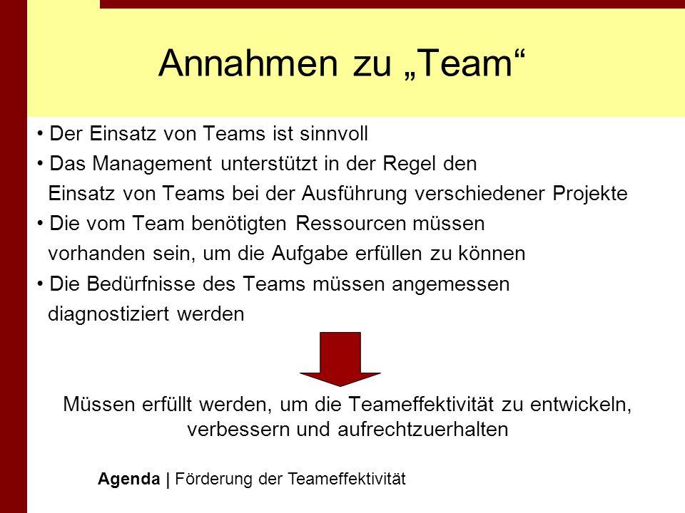"""Annahmen zu """"Team Der Einsatz von Teams ist sinnvoll"""