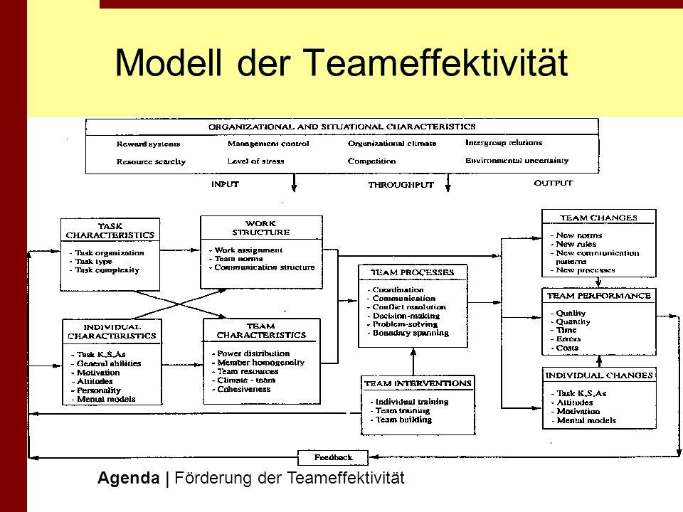 Modell der Teameffektivität