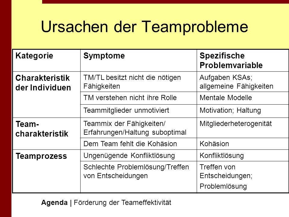 Ursachen der Teamprobleme