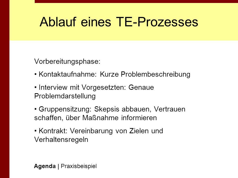 Ablauf eines TE-Prozesses