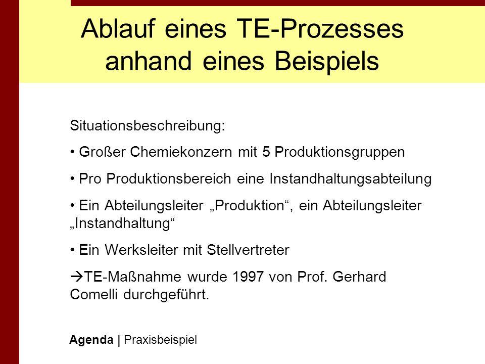 Ablauf eines TE-Prozesses anhand eines Beispiels