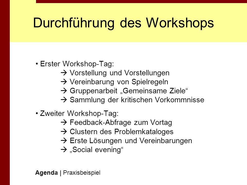 Durchführung des Workshops