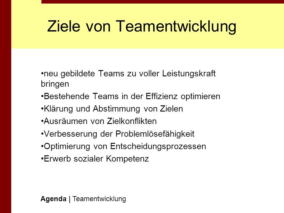 Ziele von Teamentwicklung