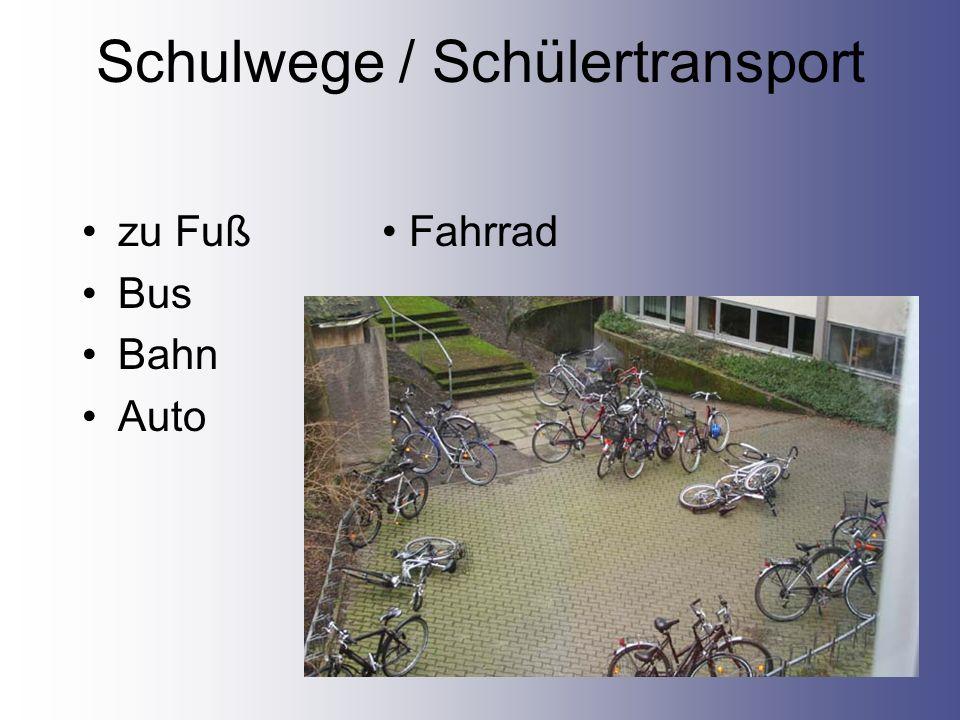 Schulwege / Schülertransport