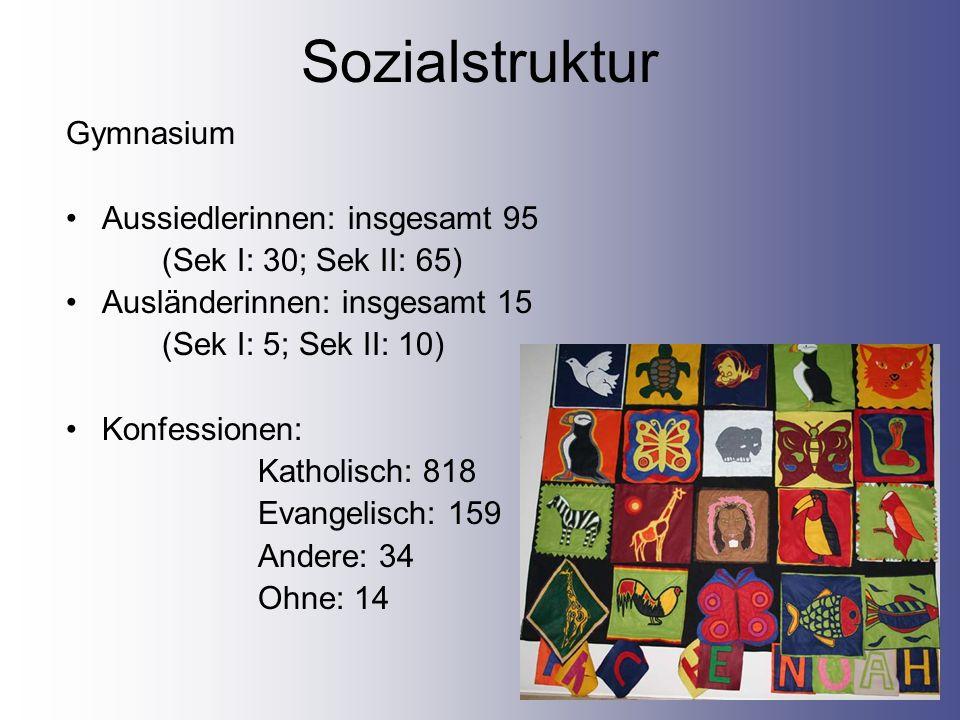 Sozialstruktur Gymnasium Aussiedlerinnen: insgesamt 95
